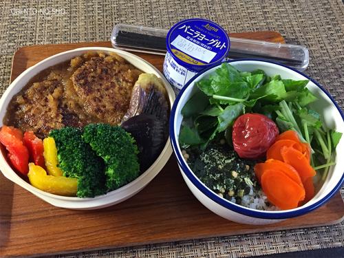 ハンバーグと野菜のおろし煮弁当