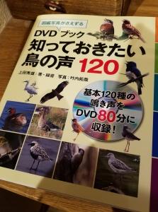 180119野鳥DVD