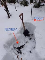 池周りの雪2