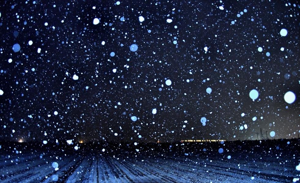 雪降って 103-2gs