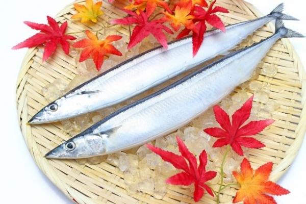 fish768776.jpg
