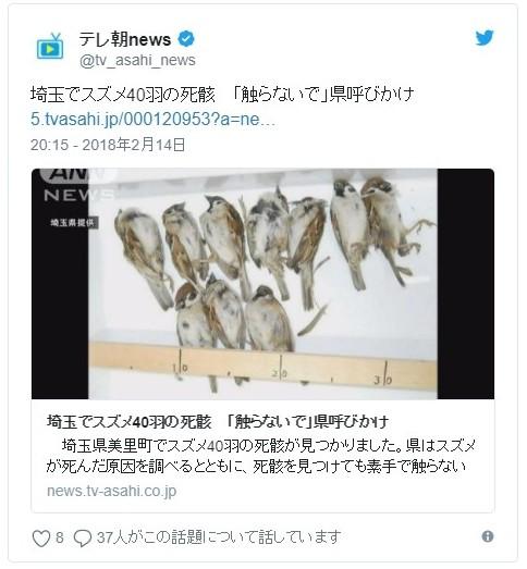【原因不明】埼玉で「スズメ40羽」の死骸が見つかる…鳥インフルエンザは陰性で、農薬も検出されず