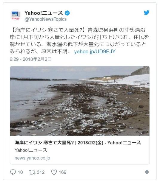 【前兆】青森県の海岸に大量の「イワシ」が打ち上げられる!水温低下のため?原因は不明