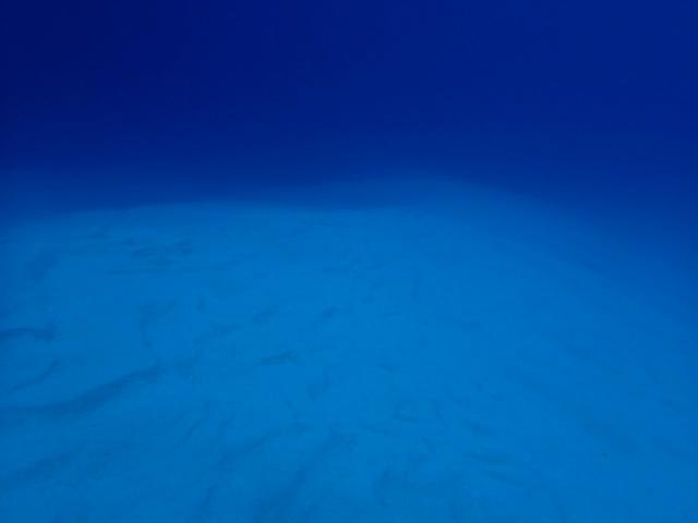 【海】今世紀最大の大噴火は海底で既に終わっていた?ニュージーランド沖で不思議な岩を発見