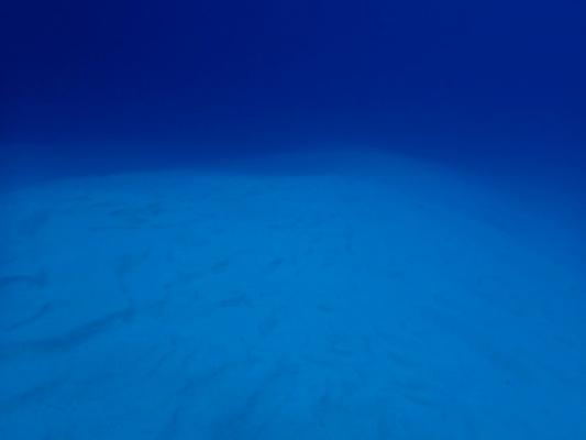 sea46849849.jpg