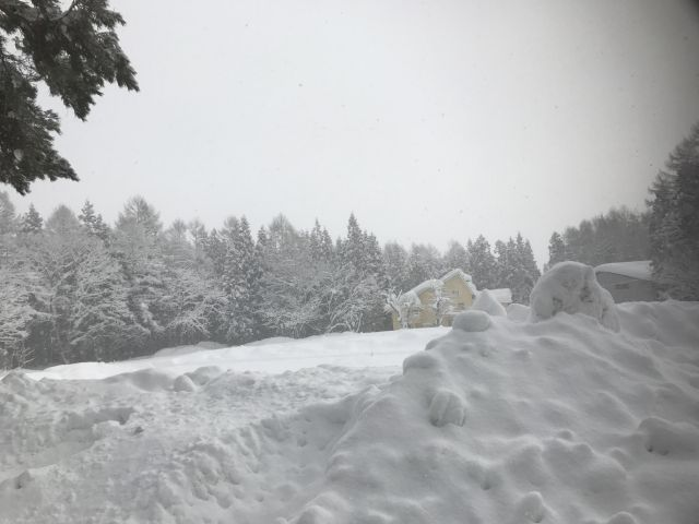 【大寒波】アメリカ・ミネソタ州の外気温「-38℃」まで下がる…93年ぶりに過去の最低気温記録を更新