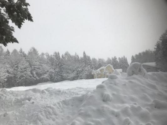 snow5863786.jpg