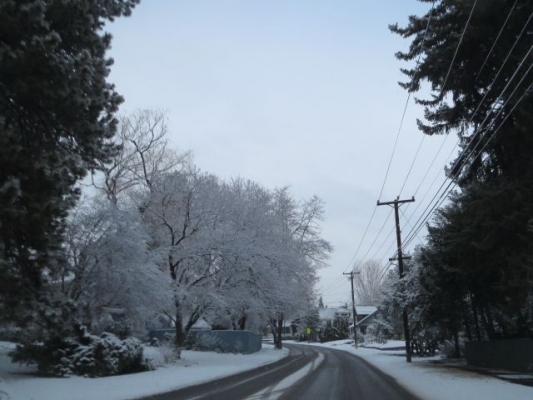 snow87638736.jpg