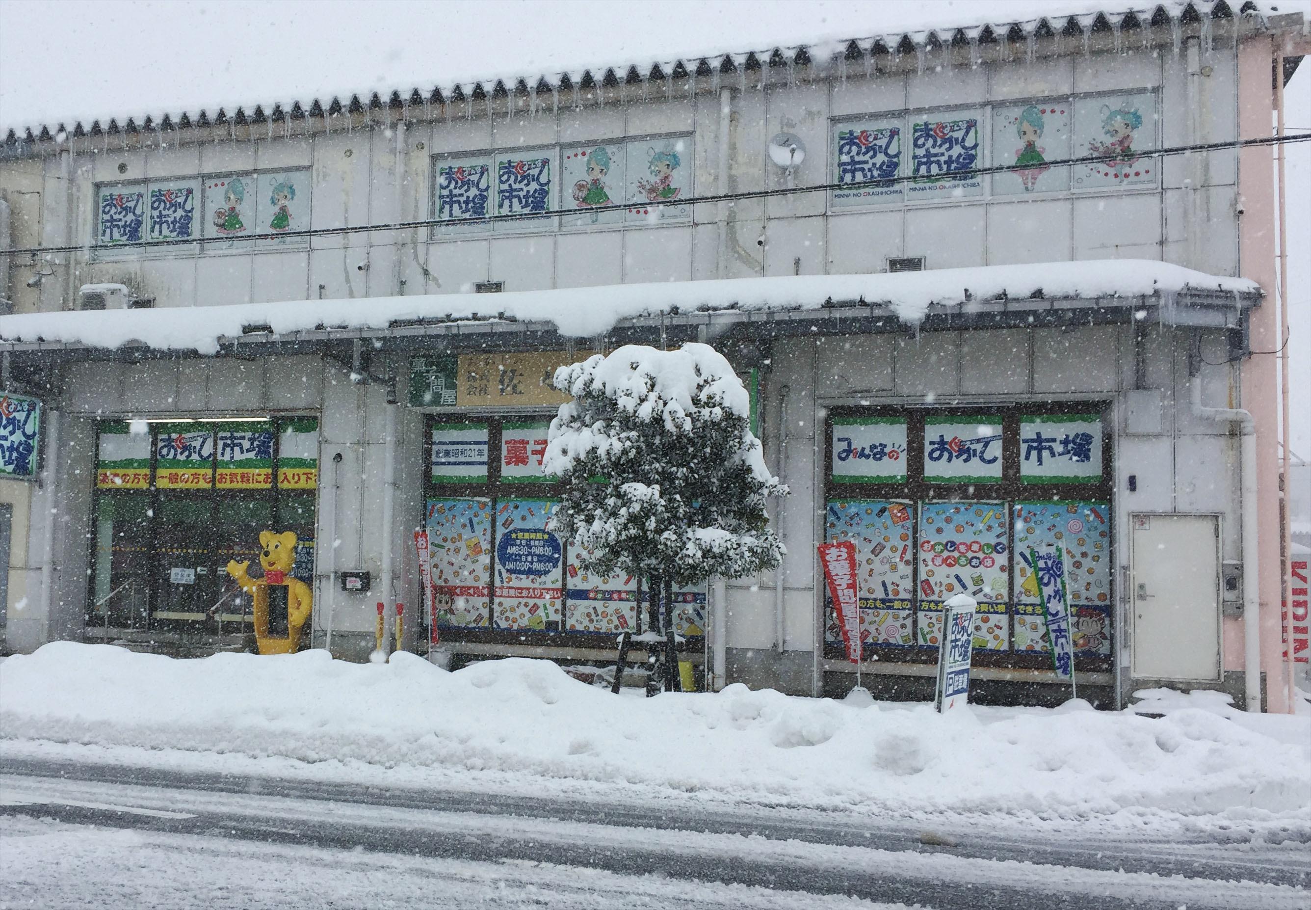 1月12日雪2