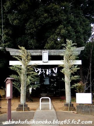 氷川神社1