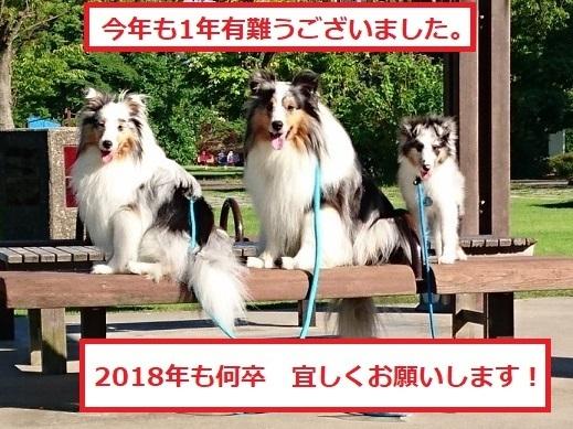 DSC_6461.jpg