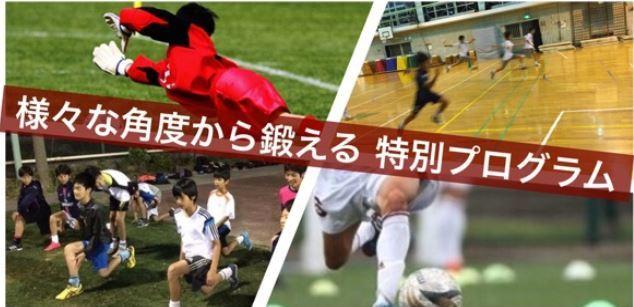 早稲田ユナイテッド川崎アカデミー クラス・コース・曜日・時間帯・料金一覧