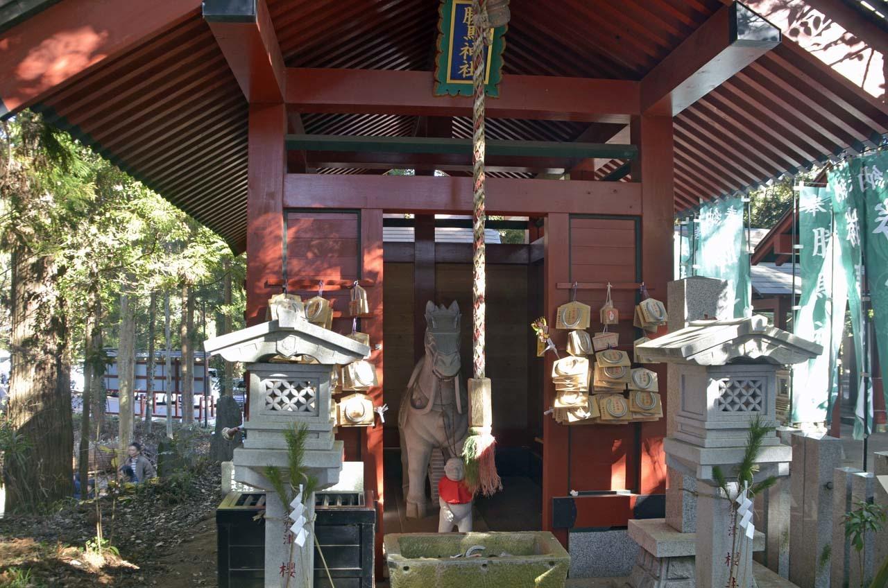 _D707410大杉神社