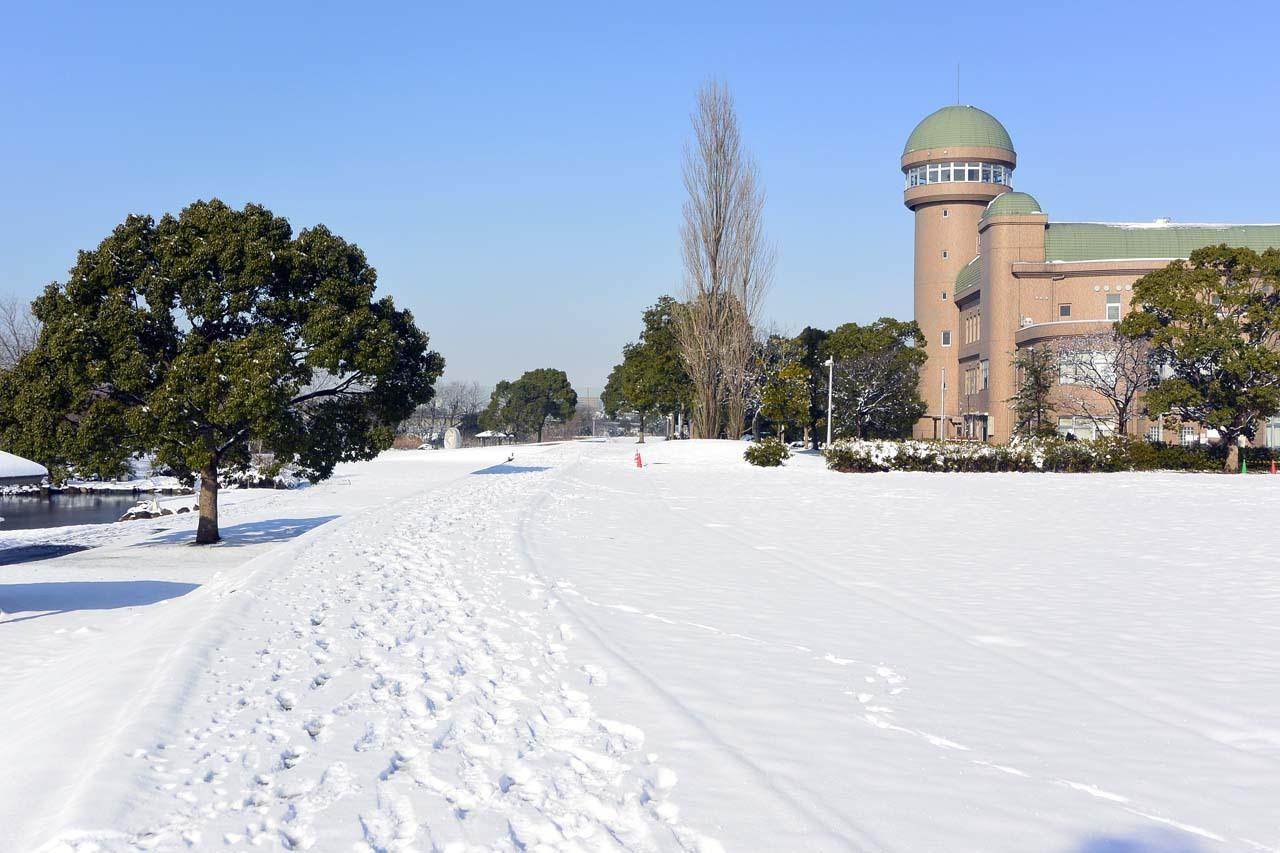 _DSC6706冬