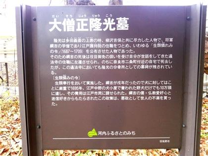 daisoujouryuukouDSC_0199.jpg