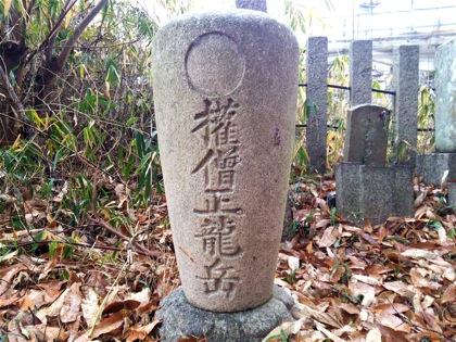 daisoujouryuukouDSC_0206.jpg
