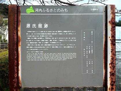 genjiyakataatoDCIM1369.jpg