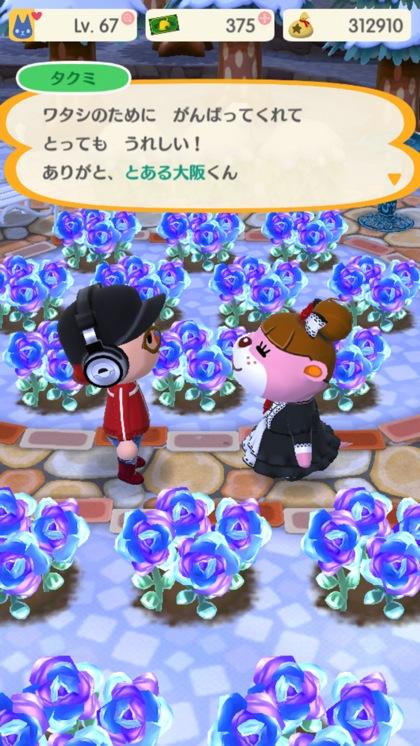 pokemori07-2Screenshot_2018-02-08-00-35-54.jpg