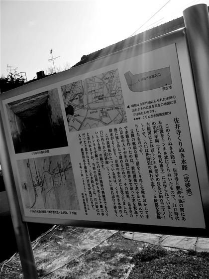 saiderakurinukisuiroDCIM0332.jpg