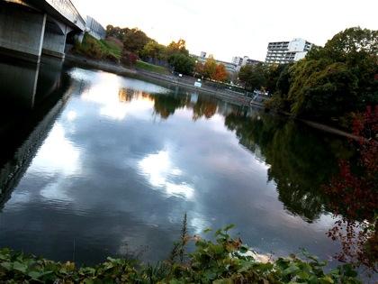 syakagaikeDSC_1291.jpg