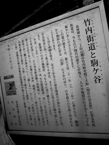 takenouchikomagataniNEC_0361.jpg