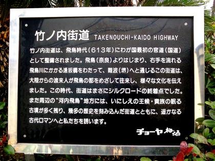 takenouchikomagataniNEC_0385.jpg