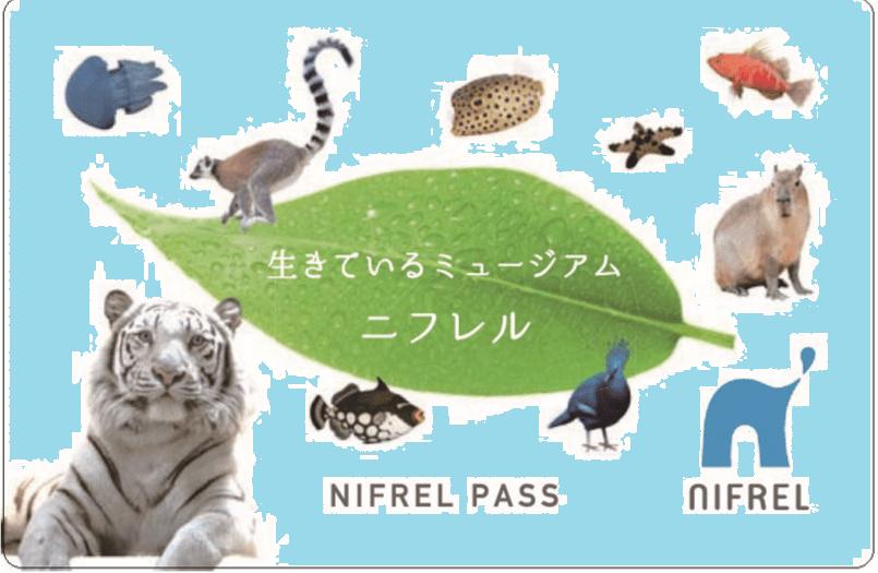 ニフレルパス-min