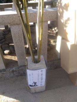HigashikagawaShirotori_004_org.jpg