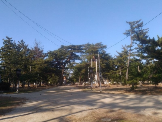HigashikagawaShirotori_011_org.jpg