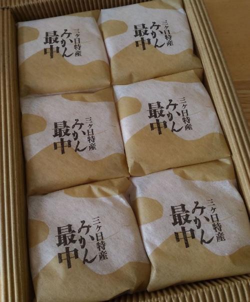 IrikawayaHamamatsuST_002_org.jpg