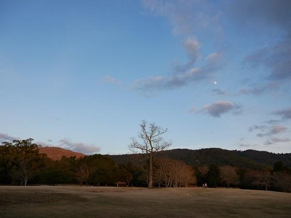 飛火野の月