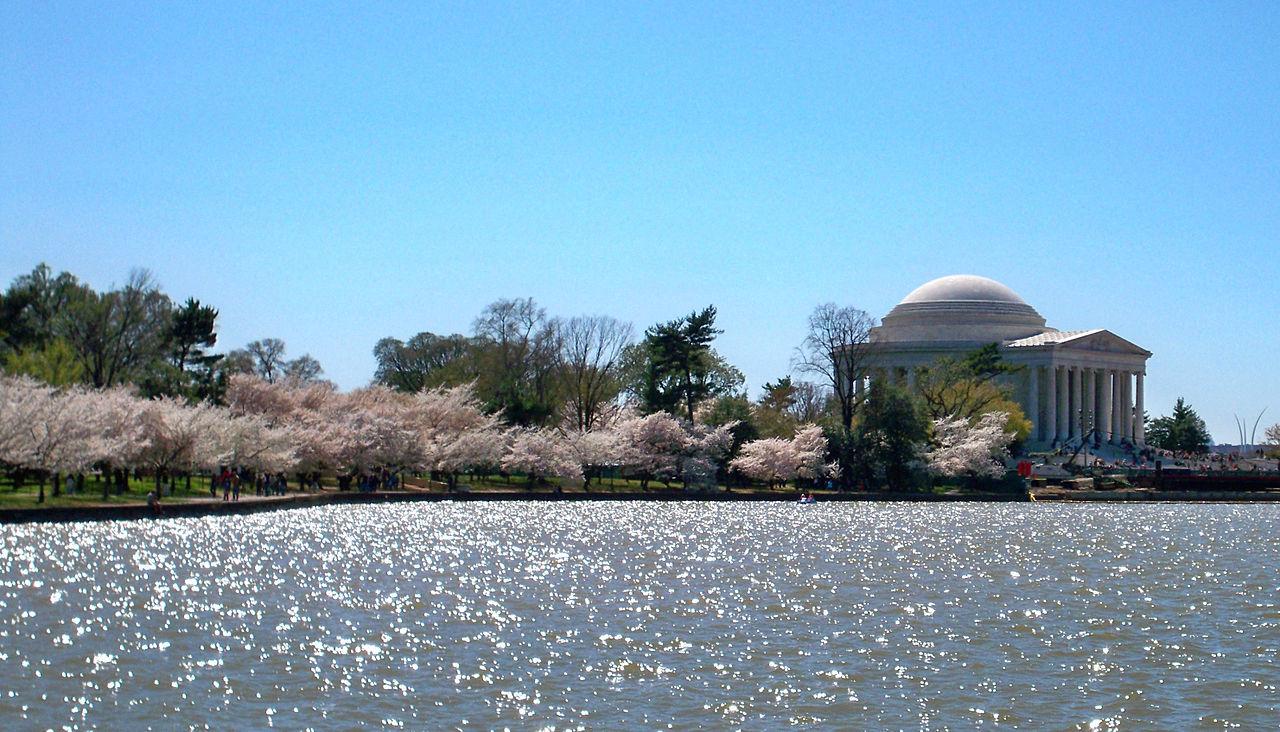 2010年の全米桜祭り中のジェファーソン記念館。