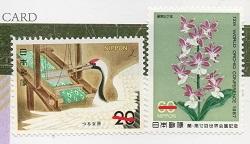 切手  243