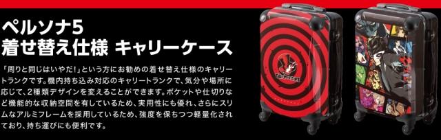 p5_case_02.jpg