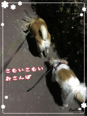 fc2blog_20180209102200390.jpg