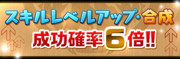 skill_seikou6x.jpg