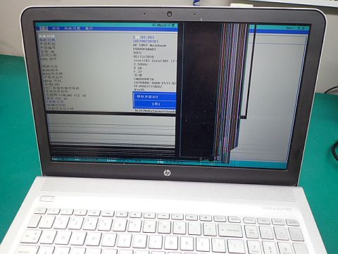 P2098809.jpg