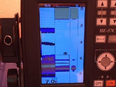 400p_IMG_2505-crop.jpg
