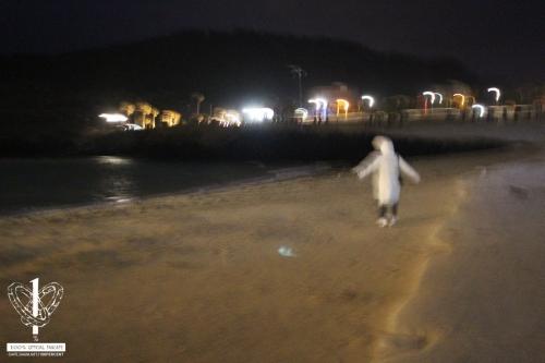 함곡해수욕장-(1)