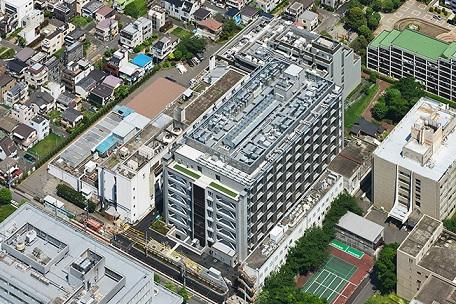 東京都土壌20171005 3