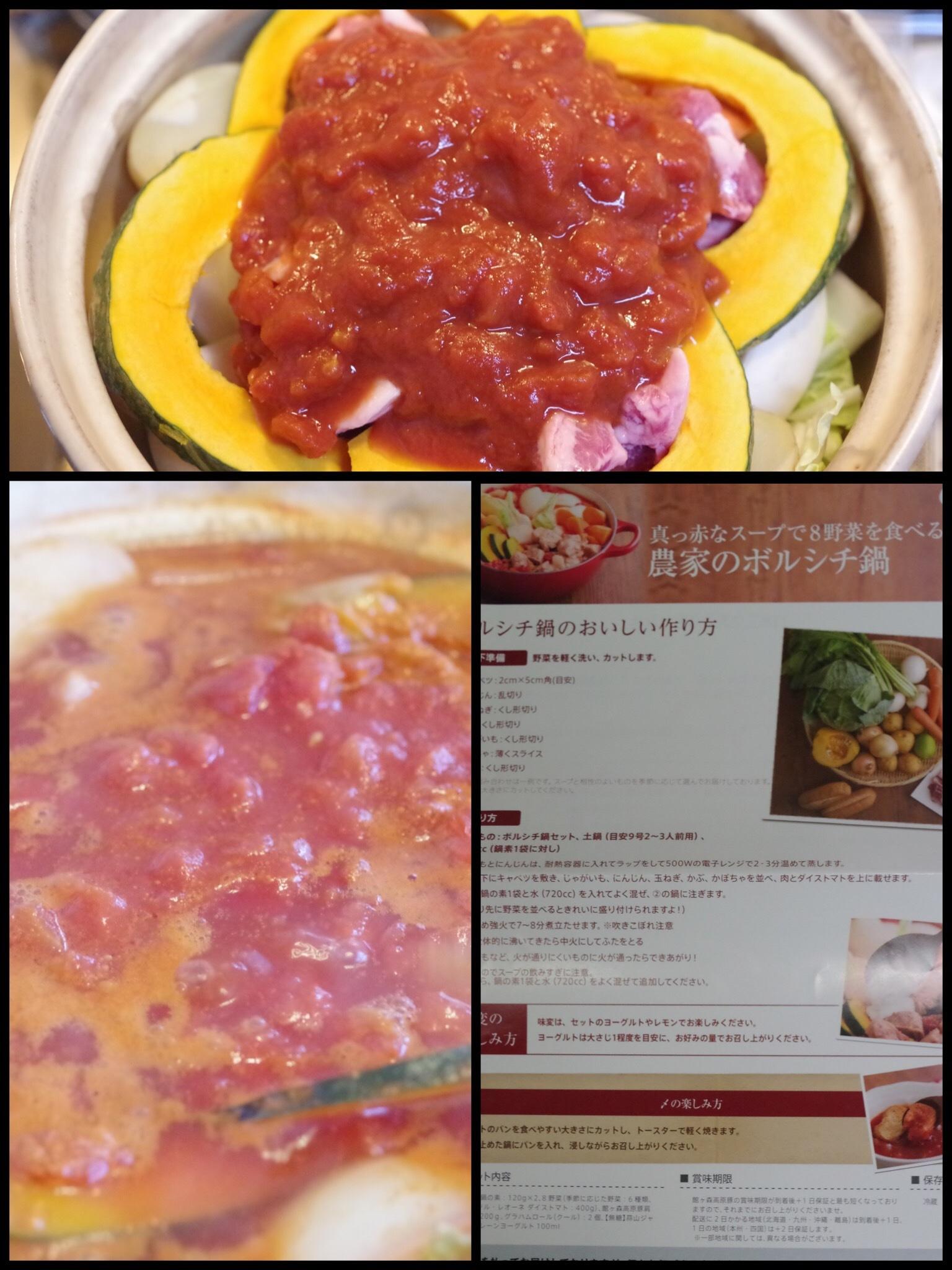 オイシックス 鍋 食材キット 農家のボルシチ鍋