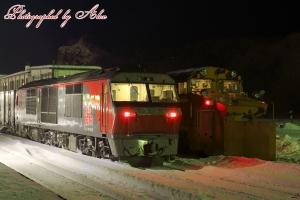 新旧ディーゼル機関車が並ぶ