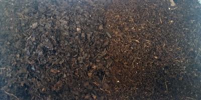 東南アジア産として売られている腐葉土