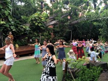 ハワイ036フラダンス