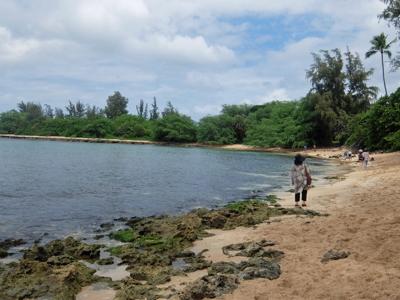 ハワイ080カメビーチ