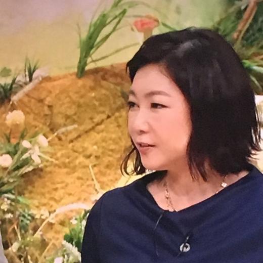 堀ちえみ04_conv