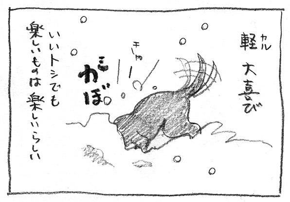 2-軽大喜び
