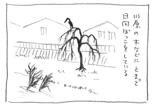 3-日向ぼっこ