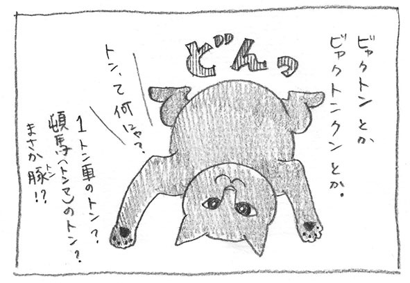 4-ビャクトン