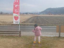 【写真】受付ハウス前でパカポコで遊ぶ小さな女の子の後ろ姿